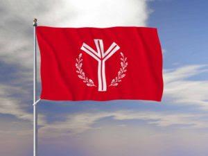 Life rune flag