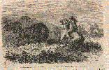 Indios cazando búfalos en el N. de América. Ampliar imagen