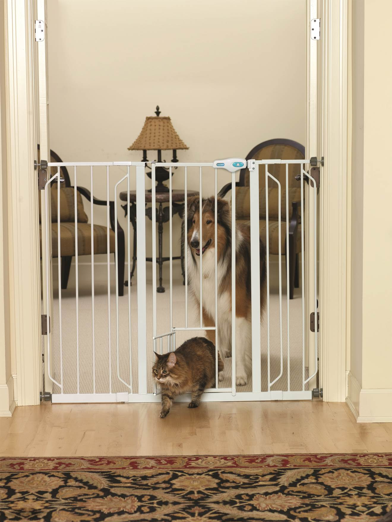 Carlson Grain Valley Dog Supply Distributor Catalog