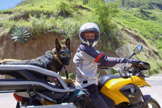 Take Your Pet Along with a Motorcycle Pet Carrier