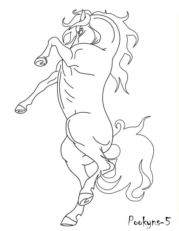 Horse Rearing Drawing at GetDrawings | Free download