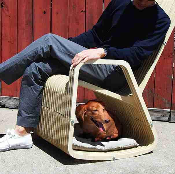 dinfo.gr - 21 έξυπνες ιδέες για τους ιδιοκτήτες ζώων αλλά και για τους τετράποδους φίλους τους!