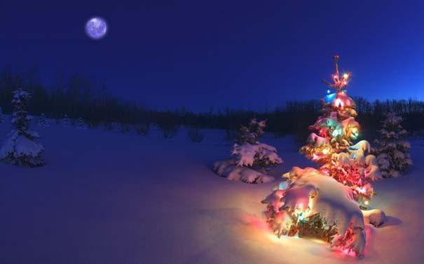 Ο Χειμώνας σε 35 υπέροχες φωτογραφίες (4)