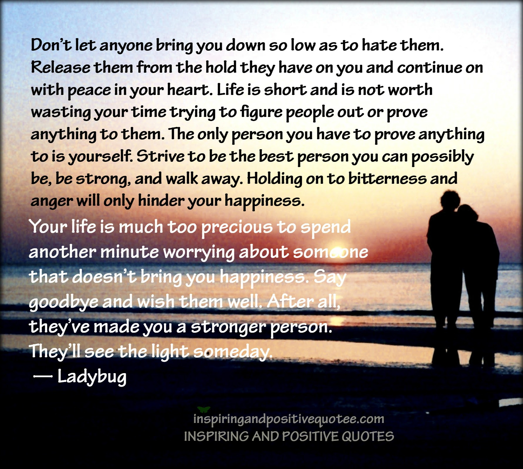 Dont Let Anyone Bring You Down So Low As To Hate Them Inspiring