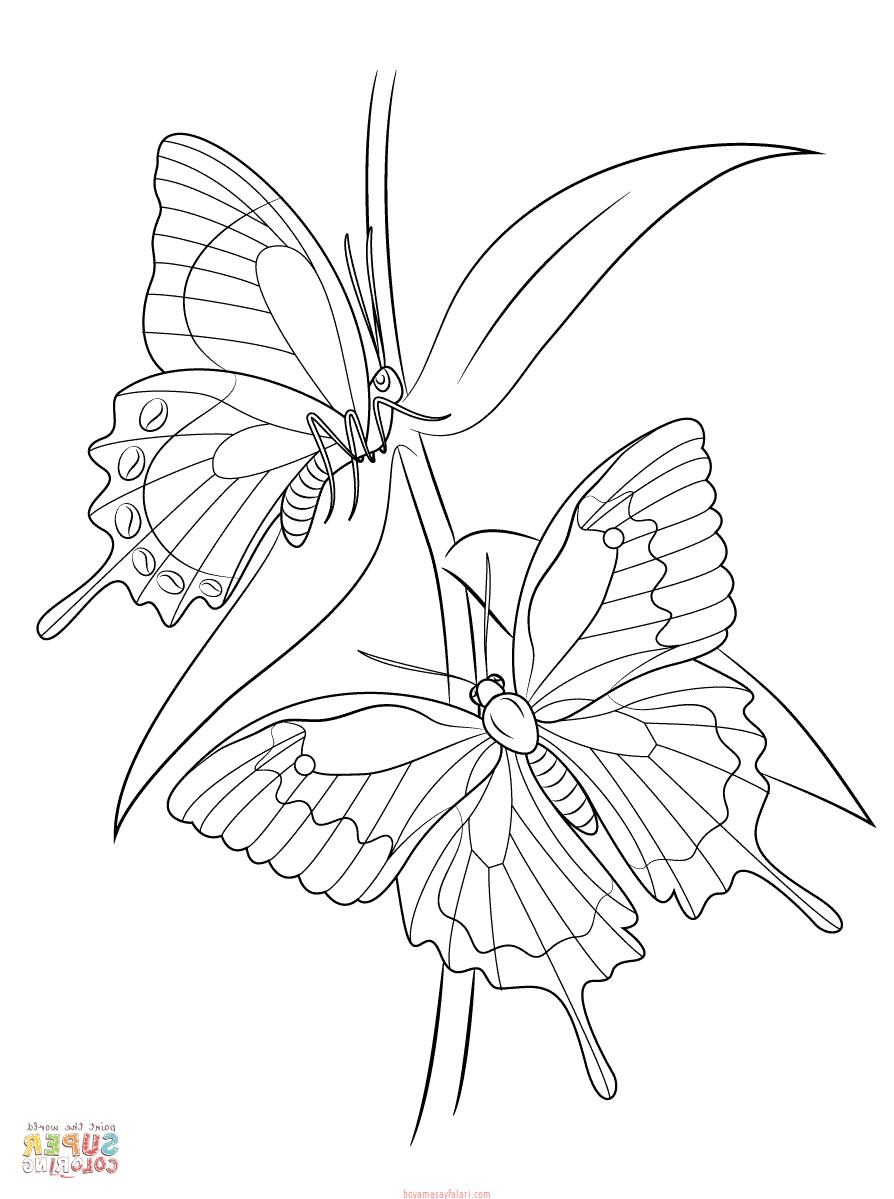 Kelebek şablonları 8 Sınıf öğretmenleri Için ücretsiz özgün