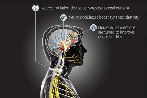 la-terapia-de-neuroe