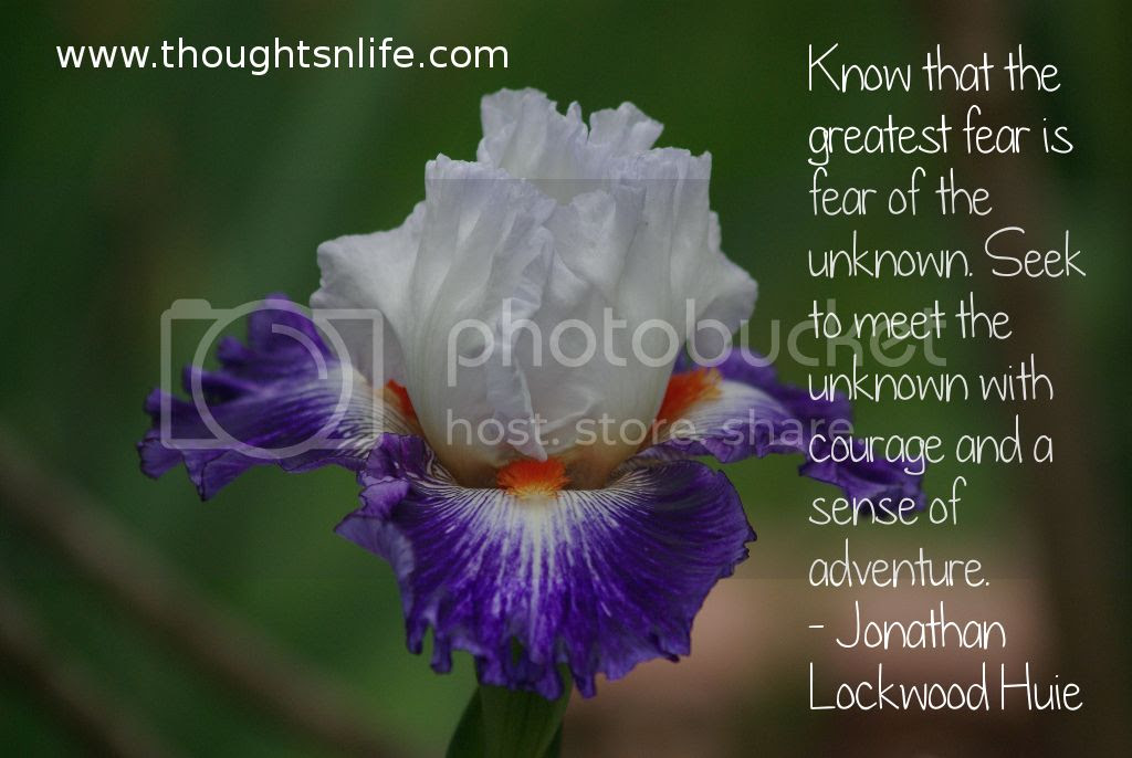 Thoughtsnlife.com :Know that the greatest fear is fear of the unknown. Seek to meet the unknown with courage and a sense of adventure. - Jonathan Lockwood Huie