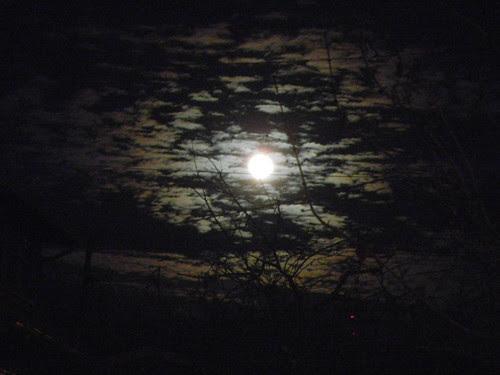 DSCN0149 _ Moon Rise, December 2013