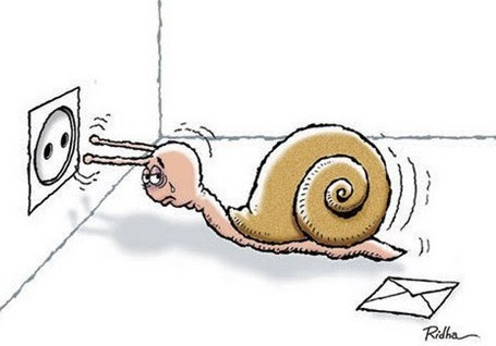 Escargot désespéré, le courant ne passait plus avec sa copine..