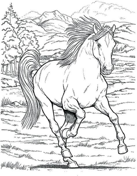 detailed horse coloring pages  getcoloringscom