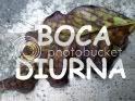 Boca Diurna