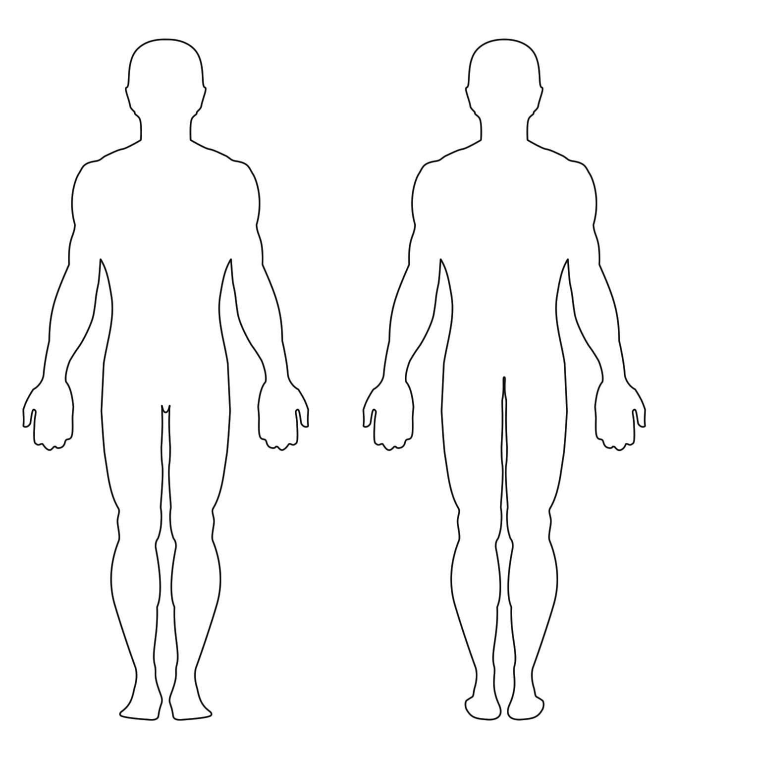 Human Body Diagram Blank - Human AnatomyHuman Anatomy