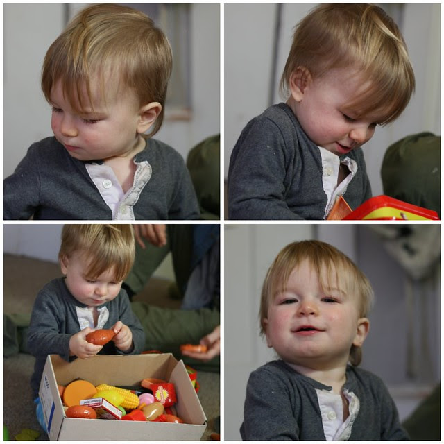 Toby 15 Months Jan2011 Collage 1