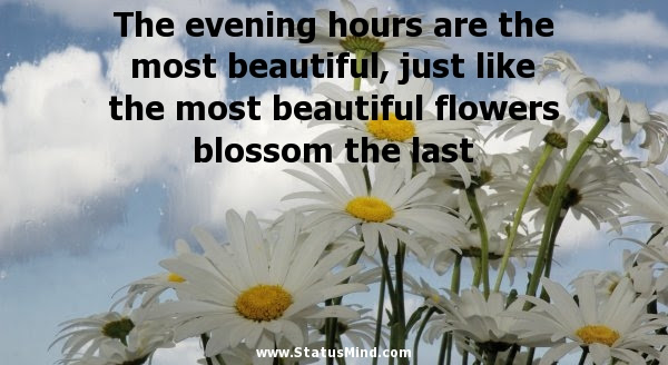 The Evening Hours Are The Most Beautiful Just Statusmindcom