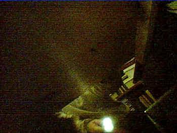 webcam.JPG (44698 bytes)