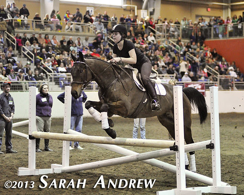 Katie Klenk and Suave Jazz at the PA Horse World Expo