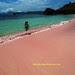 pinkbeach komodo island indonesia