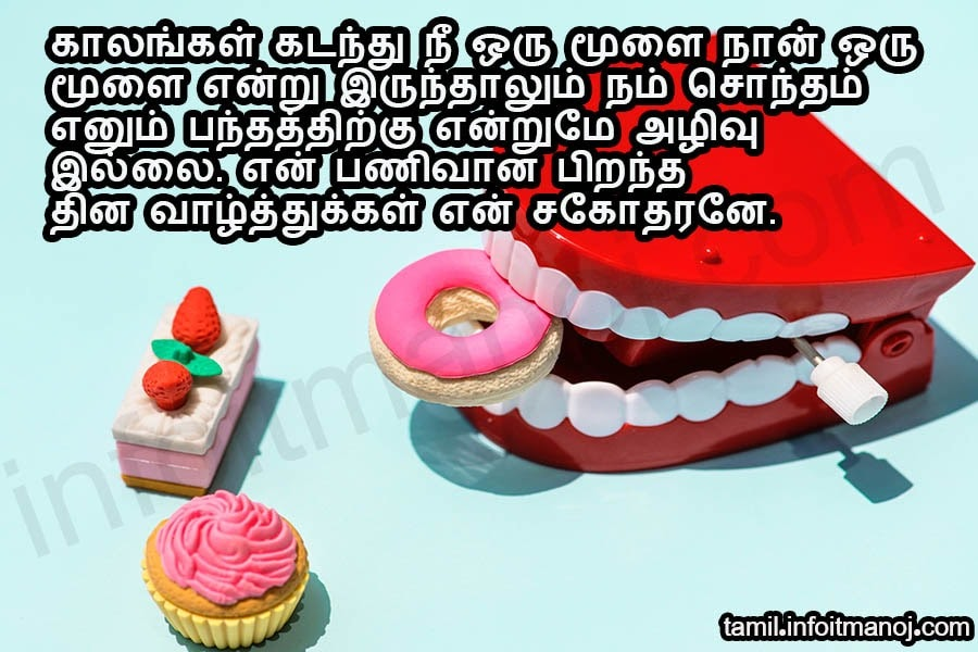 Birthday Wishes For Brother In Tamil Video Download Greeting Cards Near Me To my brother on his birthday, have a lot of fun today. birthday wishes for brother in tamil