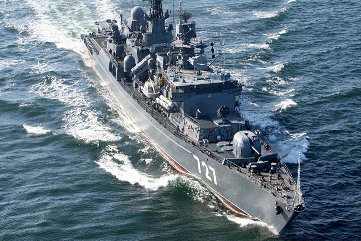 Rosia-fregata