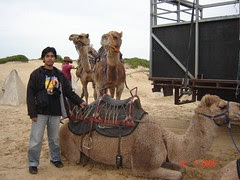 Bersama Unta2 Di Padang Pasir Port Stephen, Australia