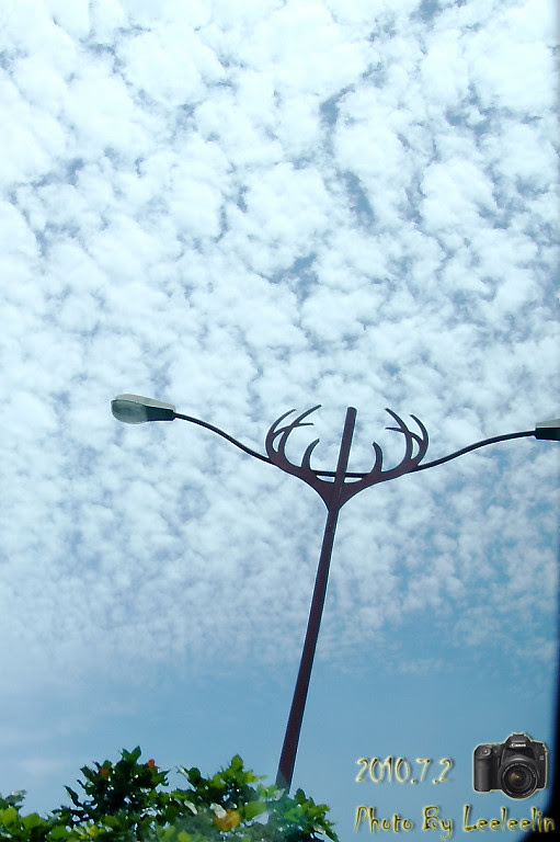 彰濱風力發電區|彰化鹿港發呆吹海風的好地方
