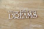 Always follow your DREAMS napis