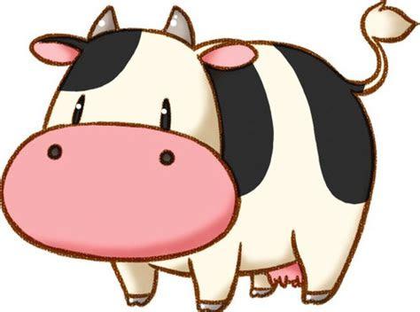 gambar kartun sapi  keren  lucu gambar mania