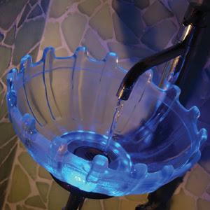 nymphaea-glass-basin.jpg