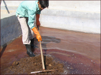 Cleaning the Poo - Elephant Poo cleaning