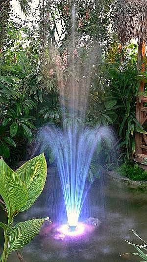 Wonderful Back Yard Water Fountains 300 x 532 · 59 kB · jpeg