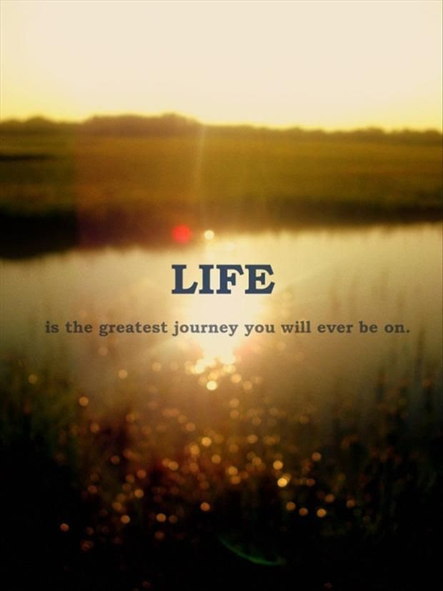 Quotes About Life Journeys 66 Quotes