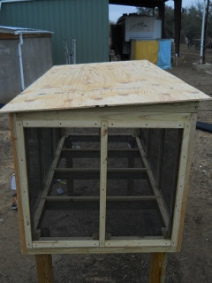 Meat Dryer Plywood Roof