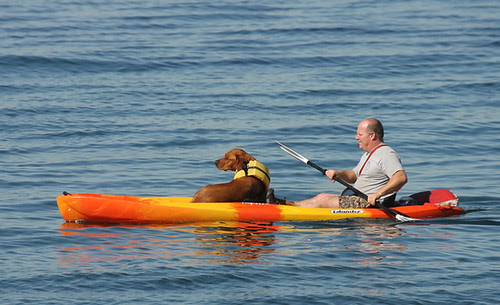 A Paddle with his pooch