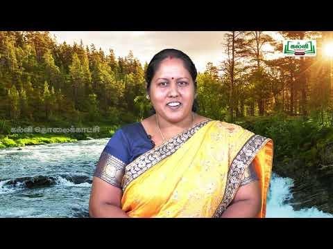 Class 9 English Unit 5 Poem The River  Kalvi TV