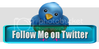twitter11.png Follow Me on Twitter image by raghunayak