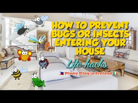 HOW TO KEEP BUGS OR INSECTS OUT OF THE HOUSE AND LET THE FRESH AIR IN