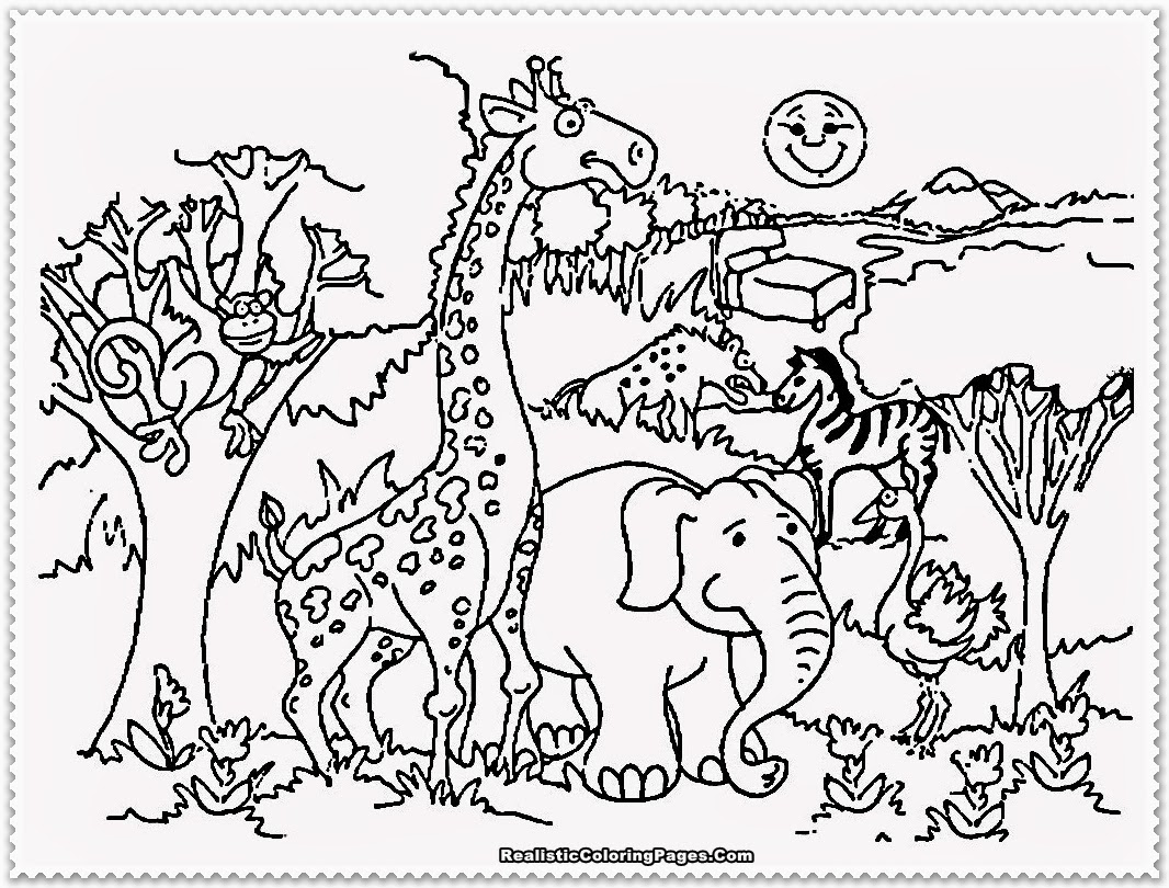660 Coloring Pages For Toddlers Animals Download Free Images
