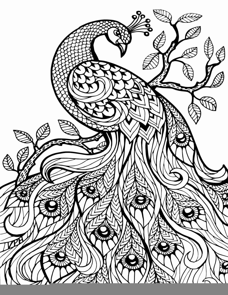 900 Top Free Printable Inspirational Coloring Pages For Adults Pdf , Free HD Download