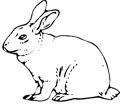 Malvorlagen Bauernhof Tiere - kostenlose Ausmalbilder