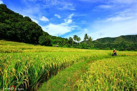 eyes  imagination rice field sunset  barru beach
