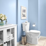 Get Inspired For Bathroom Colors 2020 Photos
