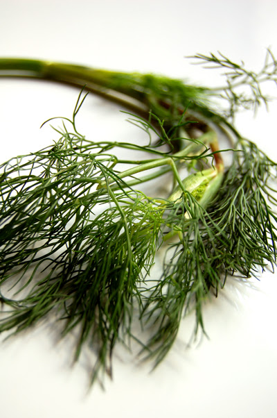 dill ©