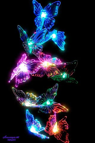 gif pictures butterfly wallpaper butterfly gif butterfly pictures
