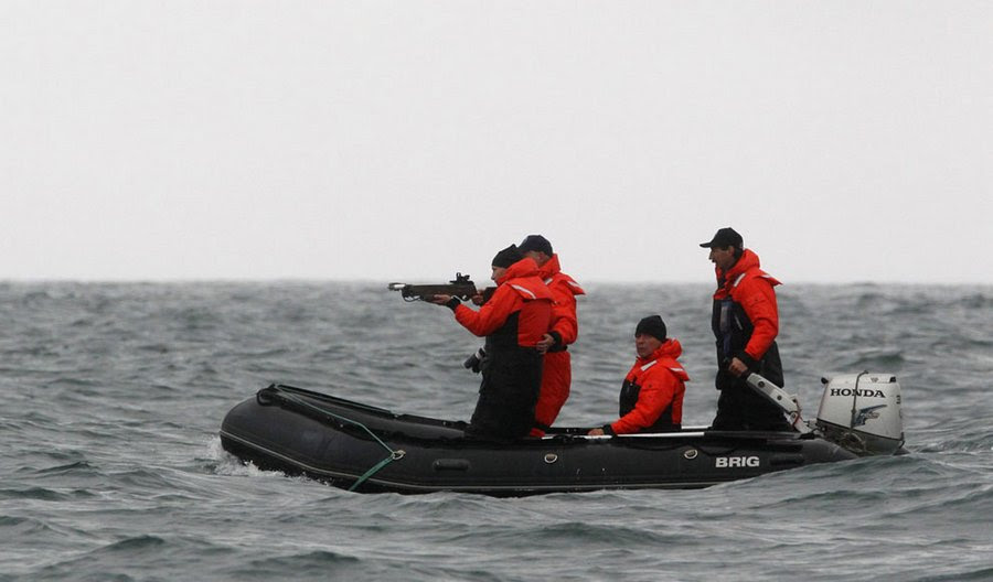 Vladimir Putin aims at a whale with a crossbow to get a piece of its skin for analysis, Olga Bay, 240 kilometers north-east of Nakhodka, August 25, 2010.