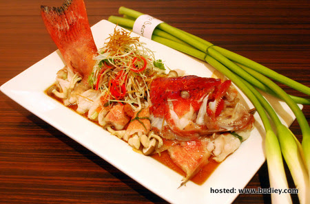 CNY (Steamed Red Grouper with Home Town Style)