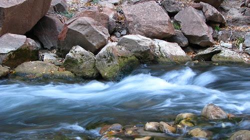 11.21.08 Zion National Park