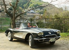 Corvette, Owner.