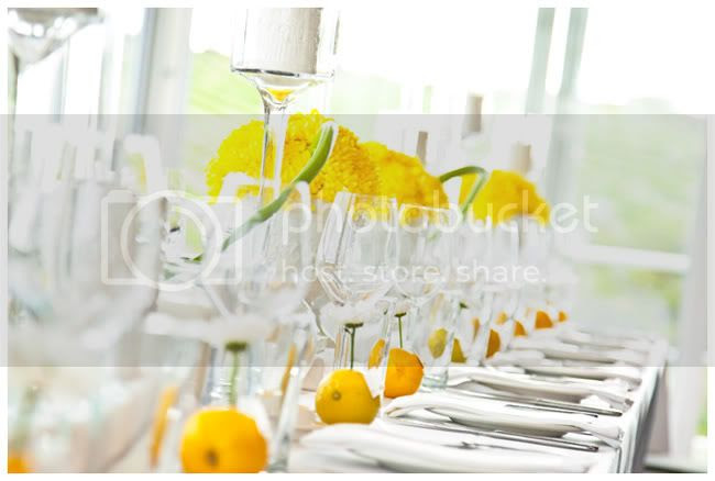 http://i892.photobucket.com/albums/ac125/lovemademedoit/NH_YellowWedding_024.jpg?t=1293438204
