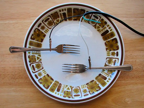 Caloric restriction: condition yourself to eat less