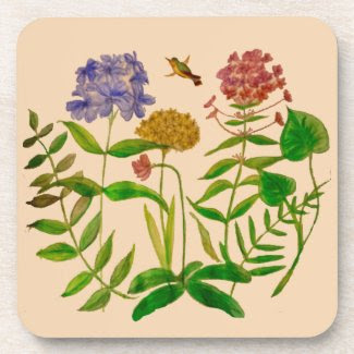 Botanical Illustration on Coaster Set
